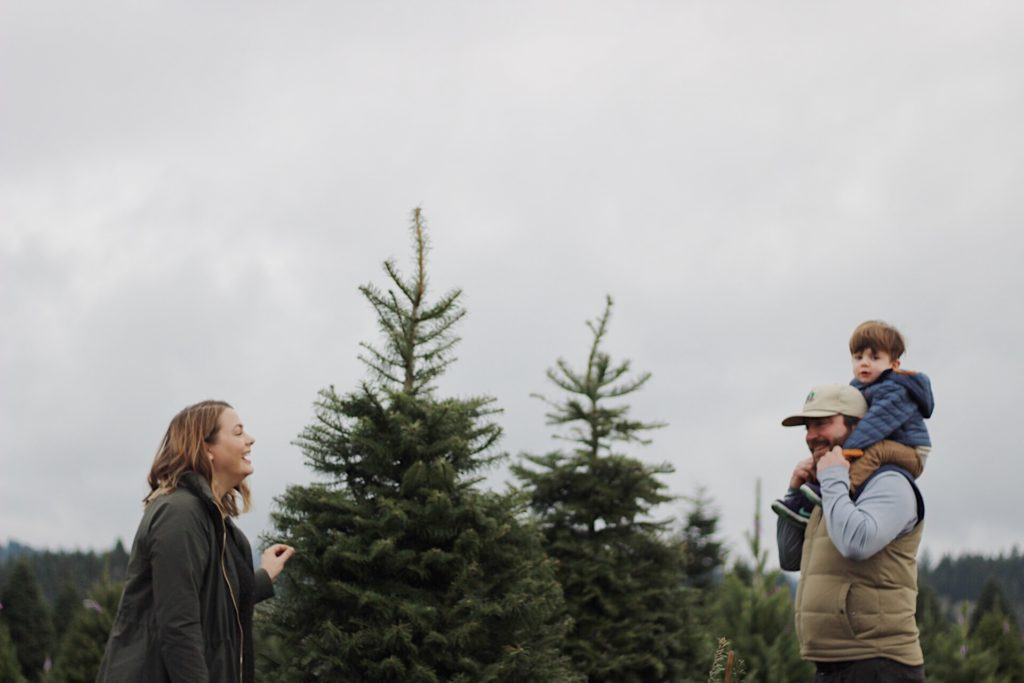 U Cut Christmas Trees.U Cut Christmas Tree Experience With Tips And Tricks This